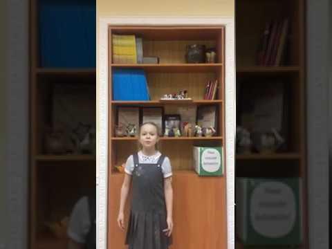 Изображение предпросмотра прочтения – ТаисияКлимушкина читает произведение «Вербочки» А.А.Блока