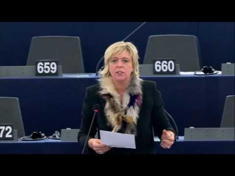 Hilde Vautmans 26 Oct 2016 plenary speech on journalists in Turkey