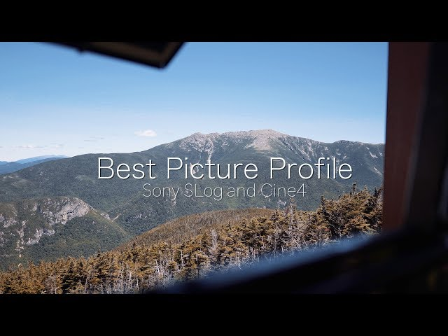 Why I Don't Shoot in CINE4 or S-Log Picture Profiles - Sony a7III