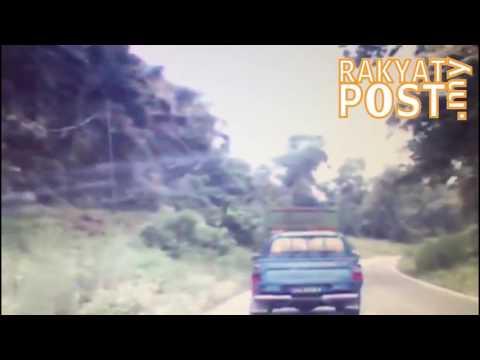 Kemalangan ngeri di Beluran, Sabah
