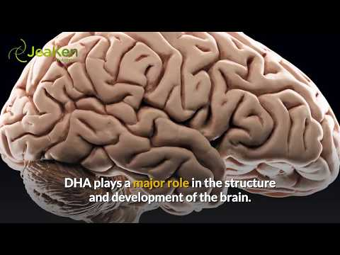 3 Shocking Benefits Of Fish Oil To The Brain