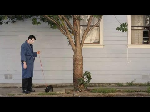 Killing My Lobster: Frankenstein's Dog