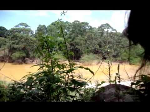 Conhecendo o Córrego Guaraú com PERY NEWS