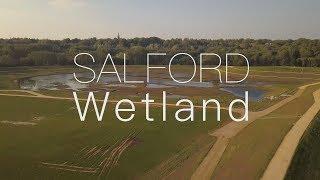Salford Wetland - A Film by Luke Blazejewski
