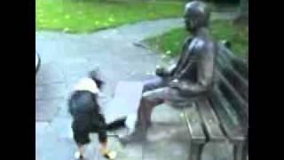 Собака пытается поиграть со скульптурой