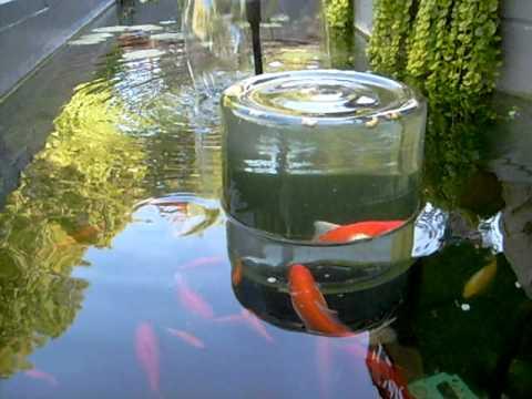 Smart fishbowl doovi for Moai fish tank cleaner