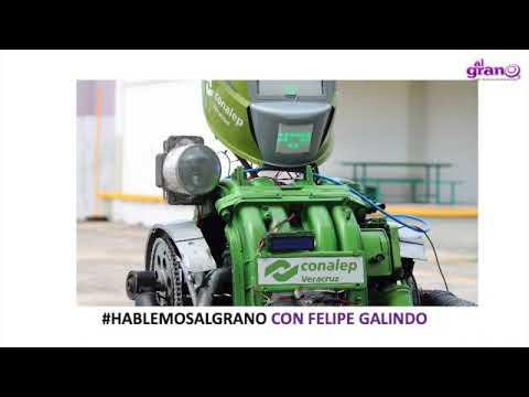 En Veracruz robot acompañará a estudiantes en su regreso a clases presenciales