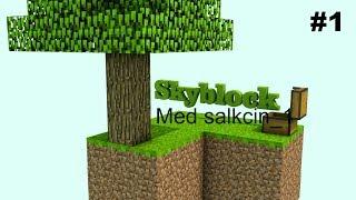 SkyBlock Ep 1 - parkour banen!