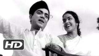 Main Rangeela Pyar Ka - Bollywood Classic Hit Peppy Song - Chhoti Bahen - Mehmood, Shubha Khote
