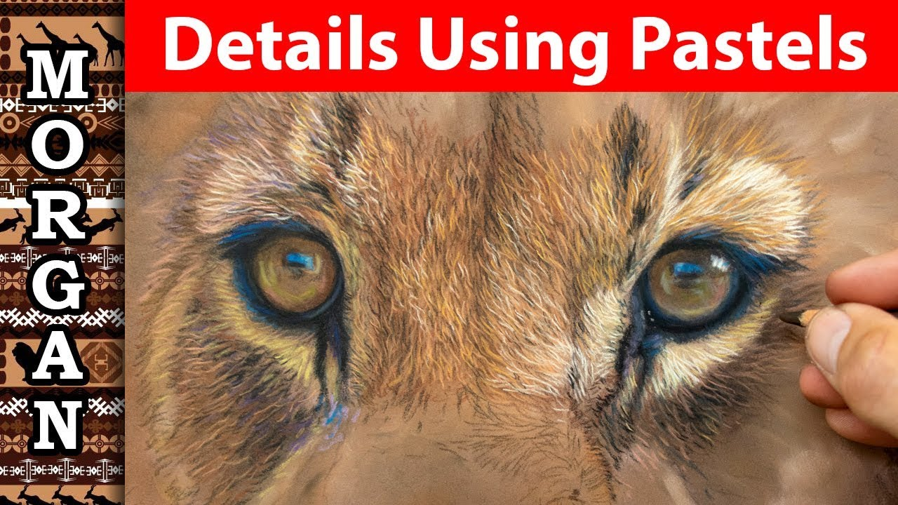 Pastel Pencil Details - for beginners to advanced