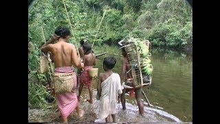 Forest Keepers: Science, Spirituality & Conservation among the Batak Tribe by J. Scott Dodds
