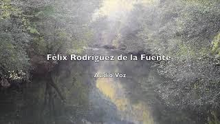 El coronavirus y Félix Rodríguez de la Fuente, audio 40 años atrás. Naturalista y futurólogo.