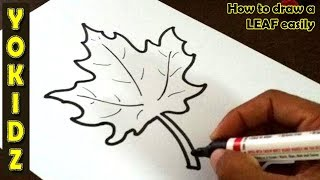 How to draw a LEAF easily