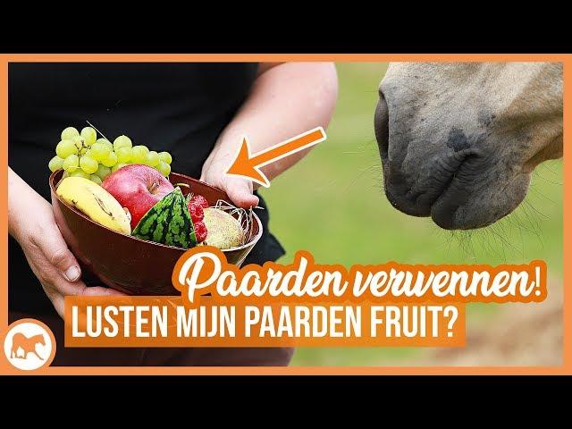 Fruit voor paarden | Lusten mijn paarden fruit?