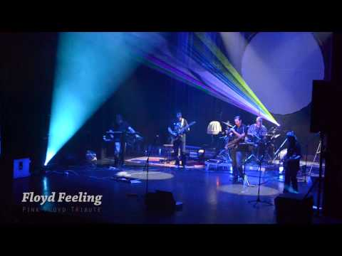 Floyd Feeling - Terminal Frost (Pink Floyd Cover)