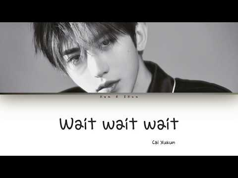 Cai Xukun (蔡徐坤) - Wait Wait Wait Lyrics