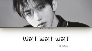 Cai Xukun (蔡徐坤) - Wait Wait Wait Lyrics