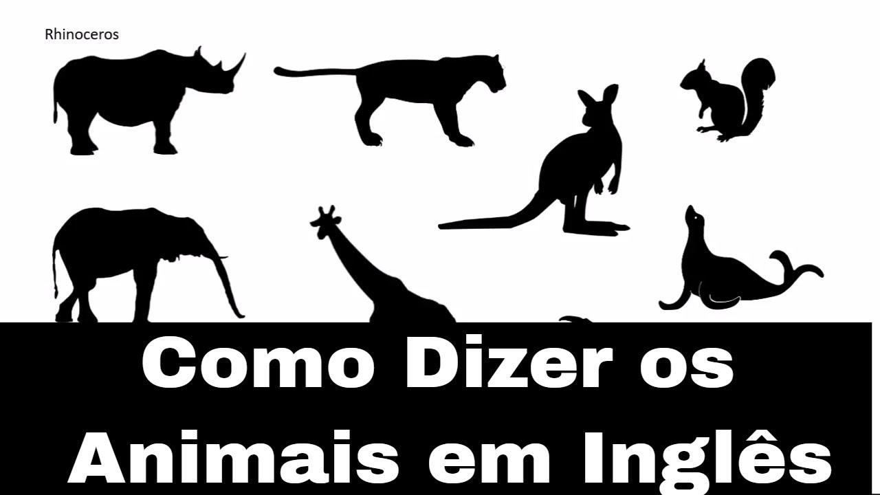 Como Dizer Os Animais Em Inglês