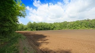 Mini Farm in Mills River, NC  - 52 Acres for Sale!