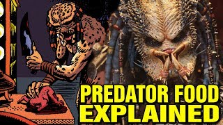 WHAT DO PREDATORS EAT? YAUTJA FOOD SOURCE EXPLAINED