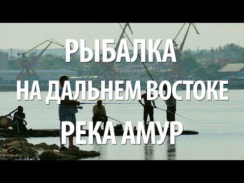 интим знакомство хабаровском крае