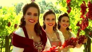 Baixar Clipe oficial da música tema da Festa da Uva 2016.
