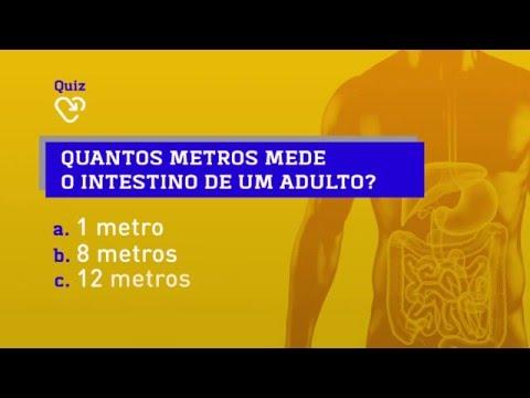 Quiz! Quantos metros mede o intestino de um adulto?