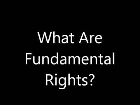 Indian Constitution Polity IAS Lecture 4 Fundamental Rights