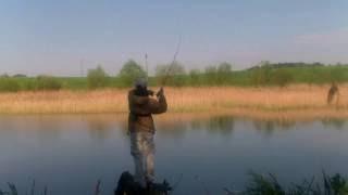 Ловля окуня на дроп шот в условиях заросших водоемов(, 2016-09-02T21:53:35.000Z)