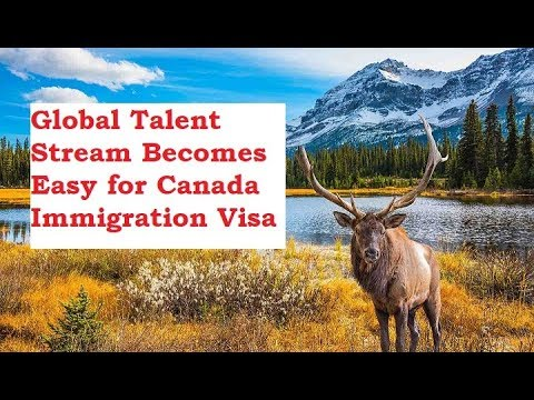 Global Talent Stream Becomes Easy for Canada Immigration Visa