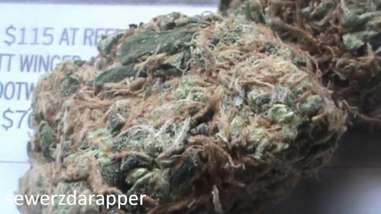 Todays Weed - Miami Haze - YouTube