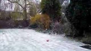 イースターの日曜日の朝ですが、雪がふりました。