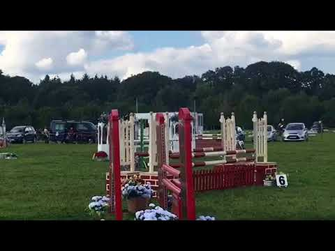 British Eventing Goring 100 double clear the amazing flying cow