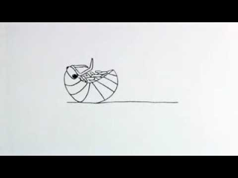 pill bug coloring pages - photo#34
