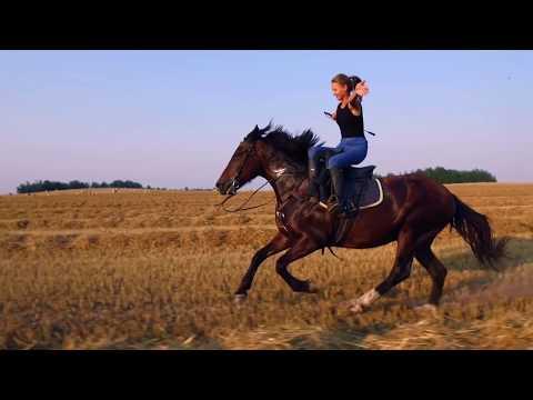 Красивая езда на лошади в дамском седле / Beautiful Leap In The Side Saddle