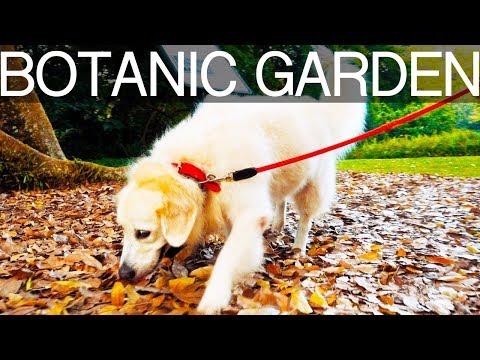 On Location: Botanic Gardens, Singapore