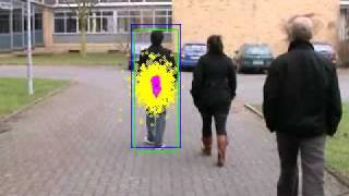 Video Tracking with an Adaptive Particle Filter (Person)