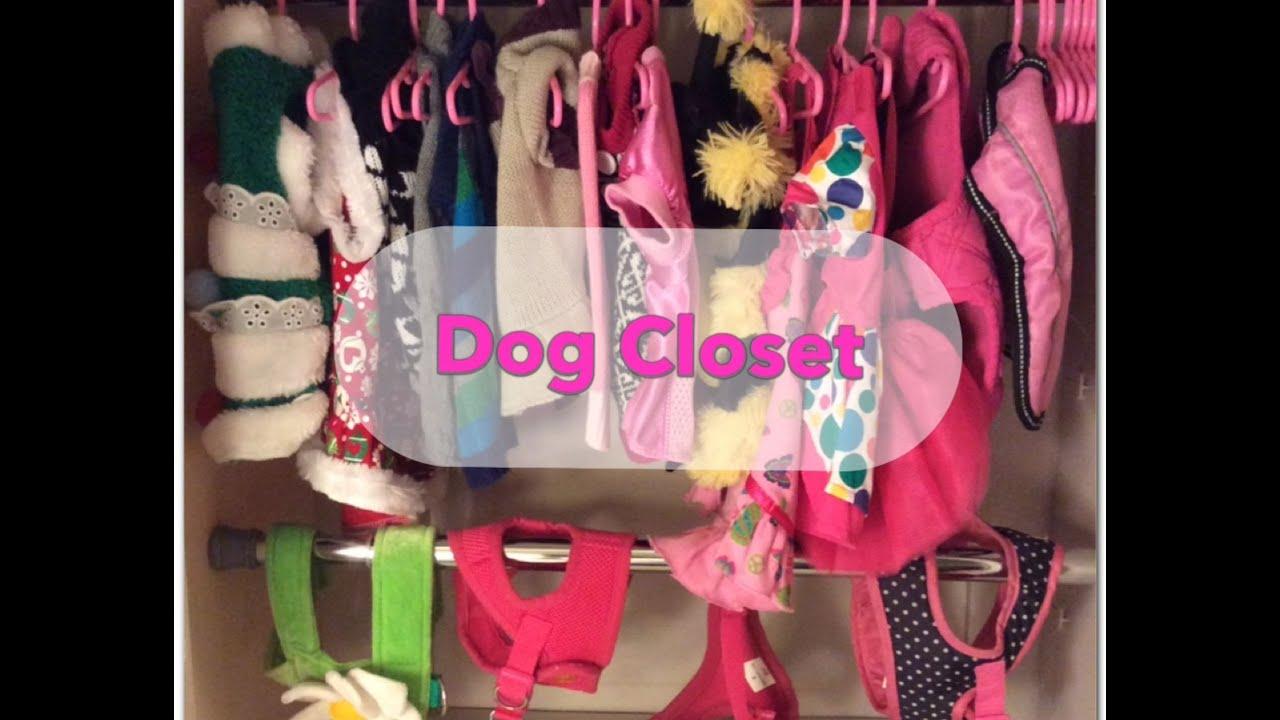 Great Dog Closet   YouTube