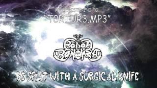 Robot Bonanza // t0rtur3.mp3 // Lyric Video