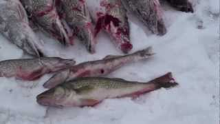 Fort Peck Ice Fishing 2010