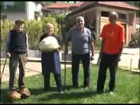 Џиновска печурка пронајдена на ливадите во беровско...