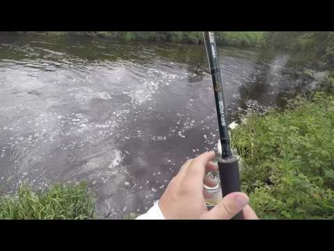Salmon Fishing On The River Girvan