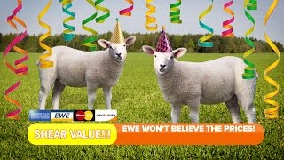 New Year, New Ewe