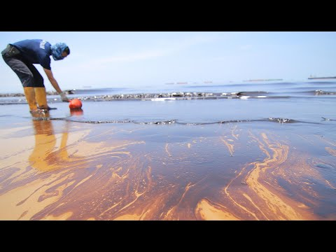 The cost-effective technology that can clean up oil spills