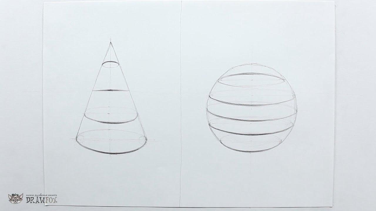 Рисовать шиншилл карандашом 2