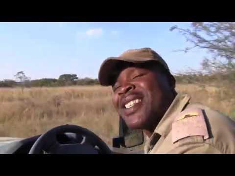 Entabeni Game Reserve safari