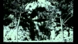 毛泽东与中国02 大跃进运动始末