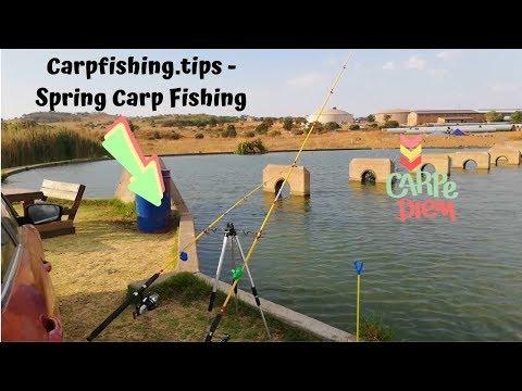 CarpFishing.Tips - Spring Carp Fishing - Ever Seen A Rod Bounce?