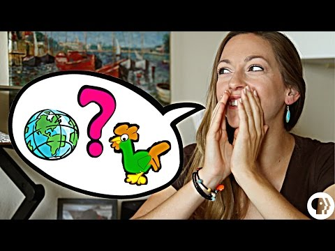 Q&A with Dianna on Physics Girl