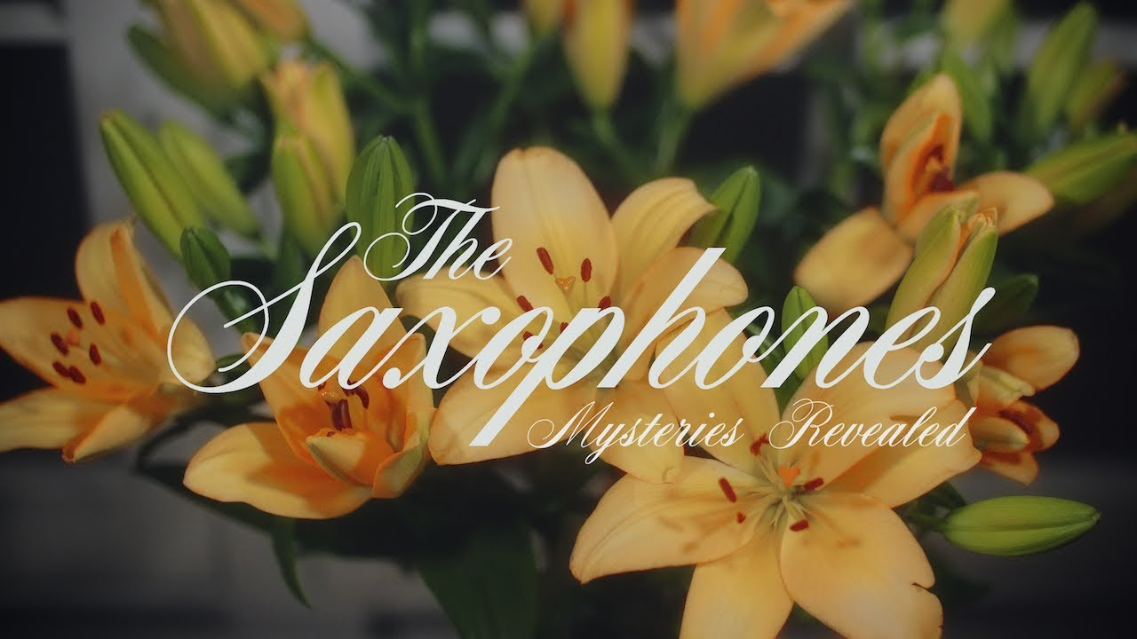 The Saxophones | Songs Of The Saxophones